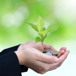 Sustainable Finance Report: Environmental, Social and Governance (ESG)